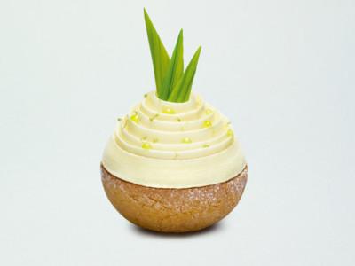 Pineapple praline chou