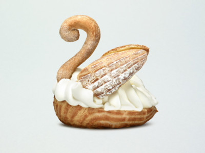 Chantilly Swan